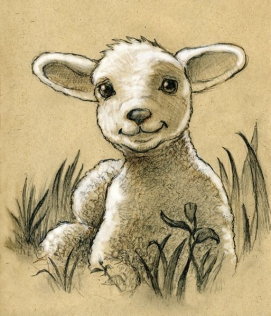 cute-sheep